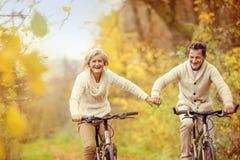 Aînés actifs montant le vélo Image stock