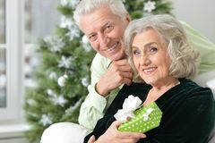 Aînés célébrant Noël Photo stock