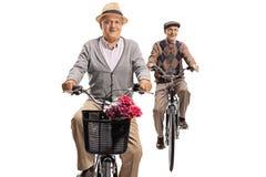 Aînés conduisant des bicyclettes Images stock
