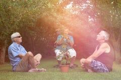 Aînés détendant avec l'usine de cannabis dehors Images stock