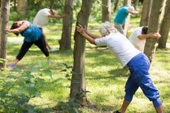 Aînés faisant des exercices en parc Photographie stock libre de droits