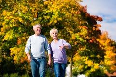 Aînés pendant l'automne ou l'automne marchant main dans la main Images stock