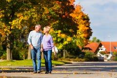 Aînés pendant l'automne ou l'automne marchant main dans la main Photo libre de droits