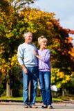 Aînés pendant l'automne ou l'automne marchant main dans la main Image stock