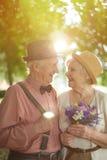 Aînés romantiques Photographie stock