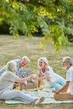 Aînés s'asseyant à un pique-nique en parc Image libre de droits