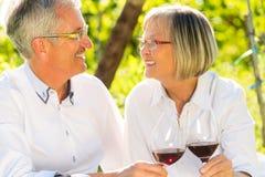 Aînés s'asseyant dans le vignoble buvant du vin rouge Photo libre de droits