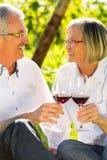 Aînés s'asseyant dans le vignoble buvant du vin rouge Photographie stock libre de droits