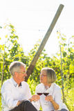 Aînés s'asseyant dans le vignoble buvant du vin rouge Photographie stock