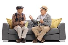 Aînés s'asseyant sur un sofa et parler Image libre de droits