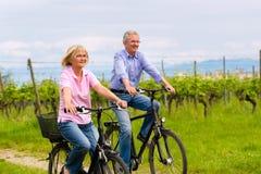 Aînés s'exerçant avec la bicyclette Photographie stock
