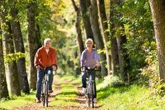Aînés s'exerçant avec la bicyclette Image stock