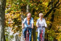 Aînés sur des bicyclettes ayant la visite dans le parc Photographie stock libre de droits