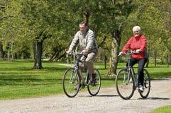 Aînés sur des vélos Image libre de droits