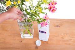 Añada el blanqueo líquido en el florero con agua para mantener las flores más frescas Fotos de archivo