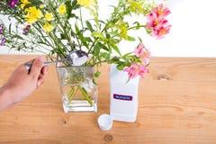 Añada el polvo del blanqueo en el florero con agua para mantener las flores más frescas Foto de archivo libre de regalías