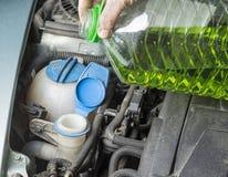 Añada para arriba el líquido del verano del limpiaparabrisas en coche Foto de archivo libre de regalías