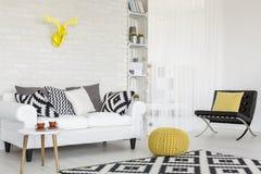 Añada un cierto amarillo a blanco y negro Foto de archivo libre de regalías