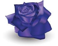 Añil Rose libre illustration