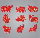 Año 2009 de la vaca y del buey Fotografía de archivo