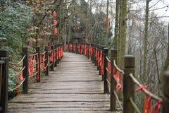 Año chino, bendiciendo Fotografía de archivo
