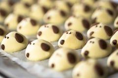 Año chino de la galleta del Año Nuevo del perro Imagen de archivo libre de regalías