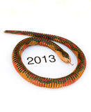 Año chino de la serpiente, 2013 Imagenes de archivo