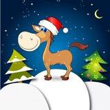 Año de caballo Foto de archivo libre de regalías