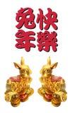Año de conejo Fotos de archivo libres de regalías