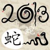 Año de la serpiente 2013 Fotos de archivo