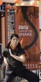 Año de la serpiente 2013 Foto de archivo