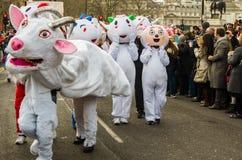 año de las ovejas Fotografía de archivo