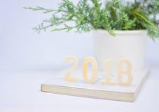 año 2018 del  del ¹ del à con el Juniperus Procumbens Imagen de archivo libre de regalías