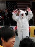 Año del conejo Imágenes de archivo libres de regalías