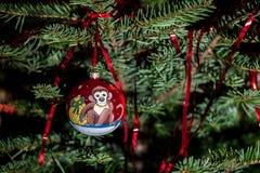 Año del mono Imagen de archivo