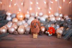 Año del perro en horóscopo, decoraciones de la Navidad Foto de archivo libre de regalías