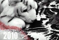 Año del tigre blanco Fotos de archivo libres de regalías