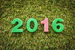 Año 2016 en hierba Imagen de archivo