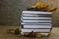 Año escolar de las hojas de los libros de texto Fotos de archivo