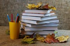 Año escolar de las hojas de los libros de texto Imagenes de archivo