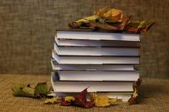 Año escolar de las hojas de los libros de texto Foto de archivo libre de regalías