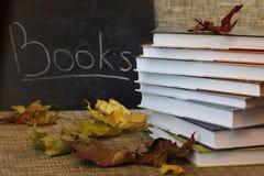 Año escolar de las hojas de los libros de texto Fotos de archivo libres de regalías