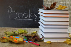 Año escolar de las hojas de los libros de texto Foto de archivo