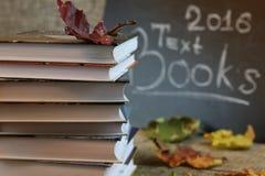 Año escolar de las hojas de los libros de texto Fotografía de archivo libre de regalías