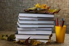 Año escolar de las hojas de los libros de texto Imagen de archivo libre de regalías