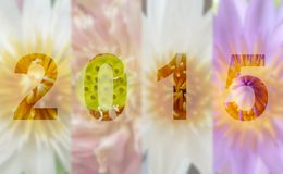 Año Lotus Flower 2015 Foto de archivo