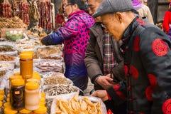 Año Nuevo chino Imagen de archivo libre de regalías