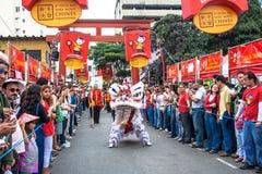 Año Nuevo chino Fotos de archivo libres de regalías