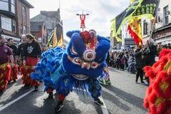 Año Nuevo chino de Liverpool - mirando fijamente usted hacia fuera - Dragon Dancers en las calles de Liverpool Fotografía de archivo
