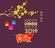 Año Nuevo chino feliz 2019 años del cerdo Los caracteres chinos significan la Feliz Año Nuevo, rica, muestra del zodiaco para la  ilustración del vector